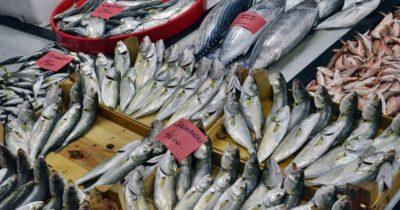 Balık tezgahları doldu taştı