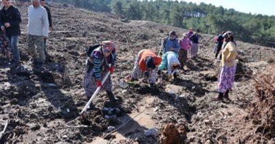Orman köylülerine 12.6 milyonluk yatırım