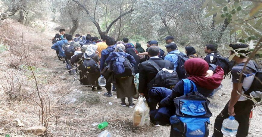 5 günde 260 düzensiz göçmen yakalandı
