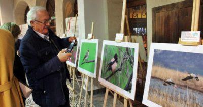 Çanakkale'nin kuşları sergide buluştu
