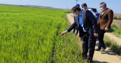 Tarımsal üretim kesintisiz sürdürülüyor