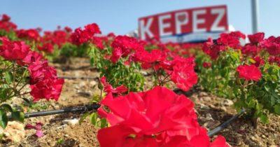 Kepez'de bayrama hazırlık var!