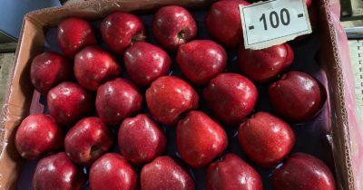 Erdoğanlar elma ihracatı ile Rusya pazarında
