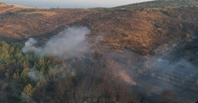 10 hektarlık alan zarar gördü