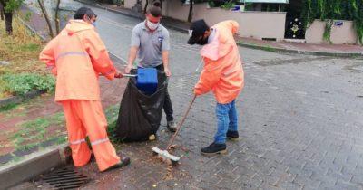 Mazgallardan yapraklardan temizlendi