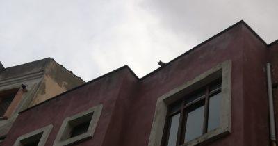 Çatıda mahsur kalan kedi 2 gün sonra kurtarıldı