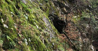 Kazdağları'ndaki kaldığı mağara turizme açılacak
