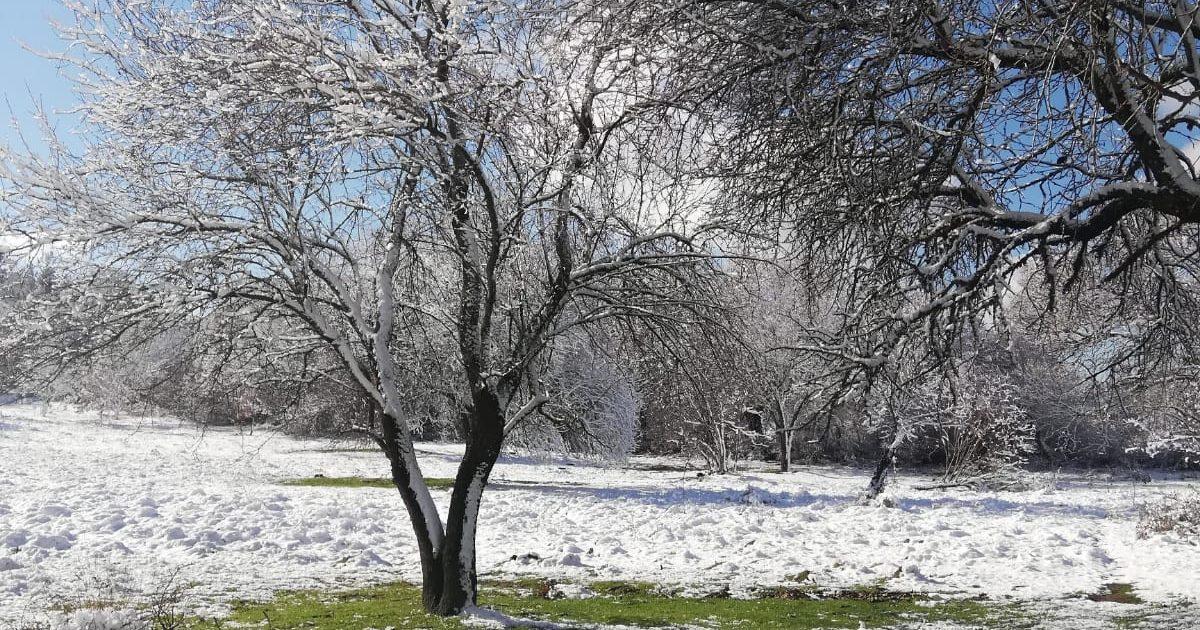Kar nihayet kendini gösterdi