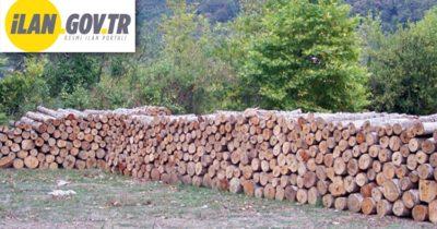 Orman emvali istifleme hizmeti alınacaktır