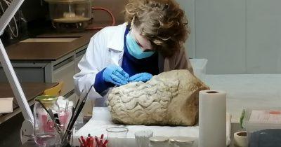 Antik eserler üzerindeki işlemler canlı izleniyor