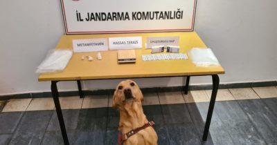 Jandarma'dan uyuşturucu operasyonu: 5 kişi