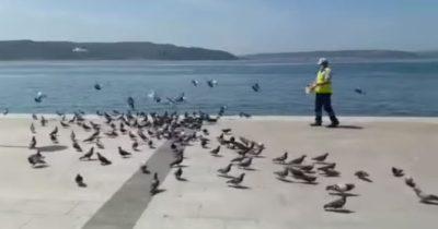 Kuşları ihmal etmediler (videolu haber)