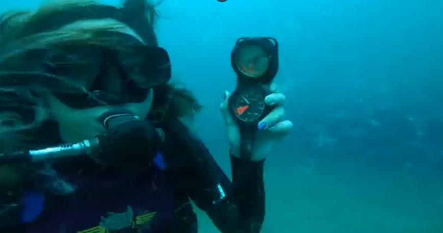 """""""Geçmiş olsun el birliği ile bir denizi öldürdük"""" (videolu haber)"""