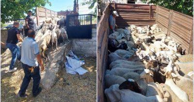 Bayramiç'ten Manavgat'taki çiftçilere destek
