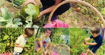 Neşeli kalpler organik bahçede