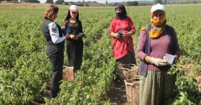 Tarım işçilerine 'kadına şiddetle mücadele'yi anlattılar